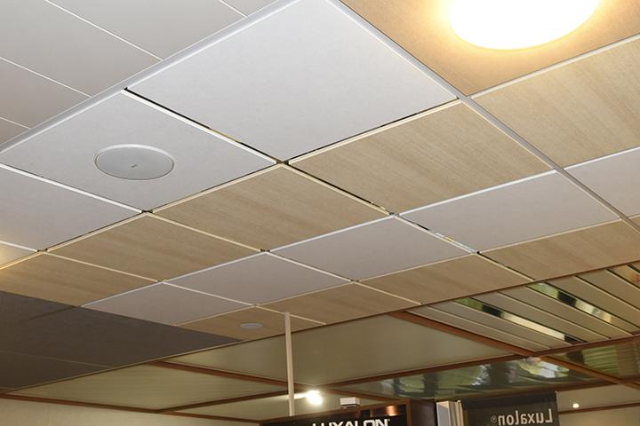 Plafonds - Systeemplafonds met doorzaktegels en inbouwluidspreker